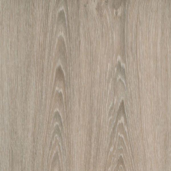 Modul 30 M314-Evergreen Oak