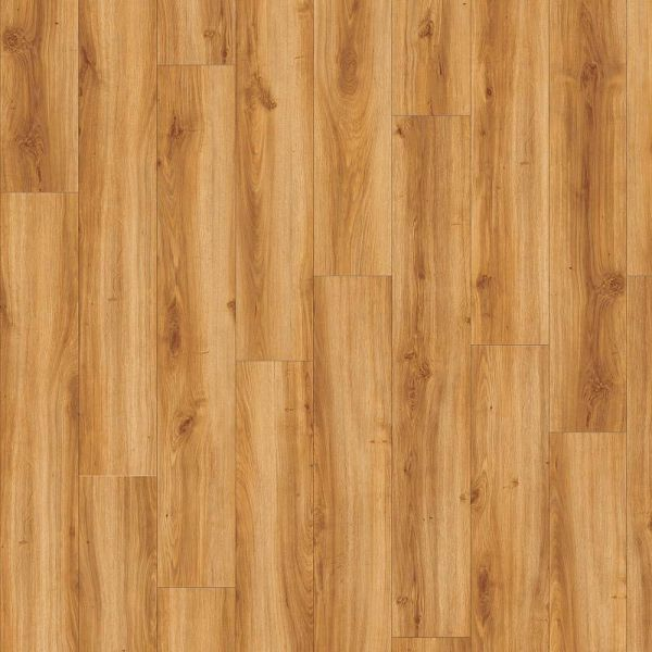 Moduleo Transform Dryback | Classic Oak 24438