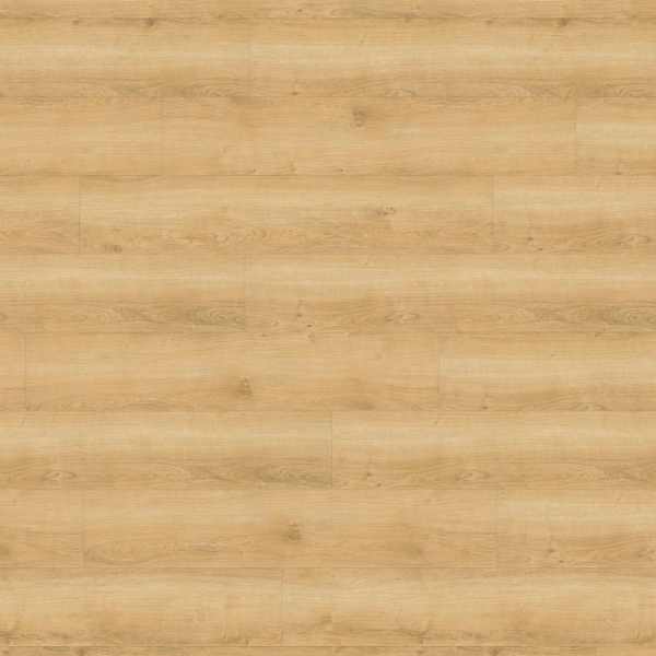 Wineo 800 wood | Zum Kleben | Wheat Golden Oak