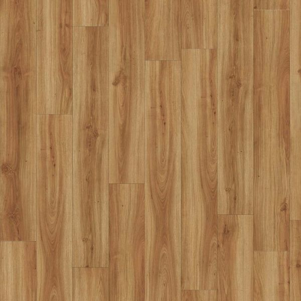 Moduleo Transform Dryback | Classic Oak 24850